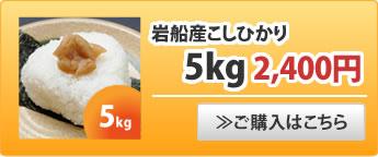 岩船産こしひかり5kg