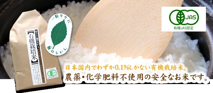 JAS認証有機栽培 岩船産コシヒカリ
