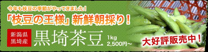 新潟県産黒埼茶豆の販売