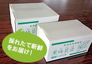 黒埼茶豆2kg