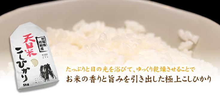 天日米コシヒカリ
