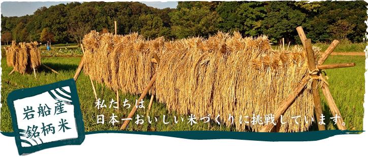 岩船産銘柄米