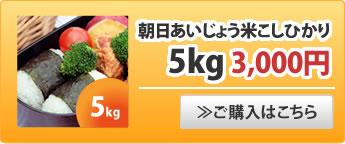 朝日あいじょう米こしひかり5kg