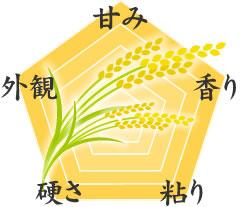お米の食味データ
