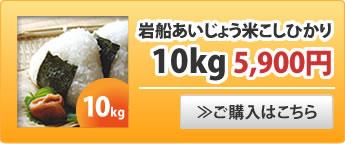 岩船あいじょう米こしひかり10kg