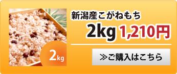 新潟産こがねもち2kg