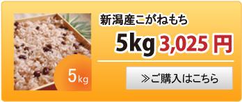 新潟産こがねもち5kg