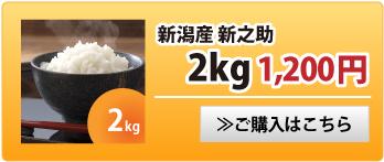 新之助2kg
