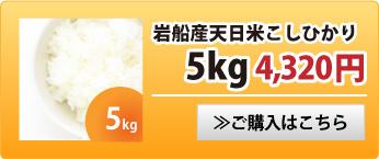 天日米こしひかり5kg