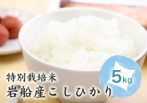 岩船産こしひかり特別栽培米5kg