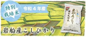 特別栽培米岩船産こしひかり