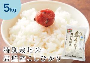tokusai_koshi5